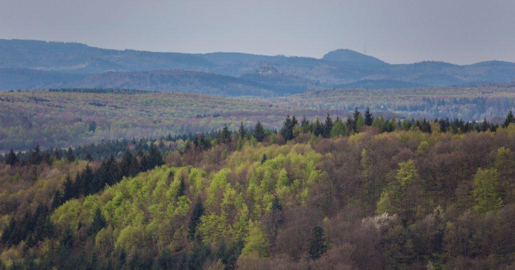 Sentier du Loostahl